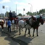 Конный парад в Севилье